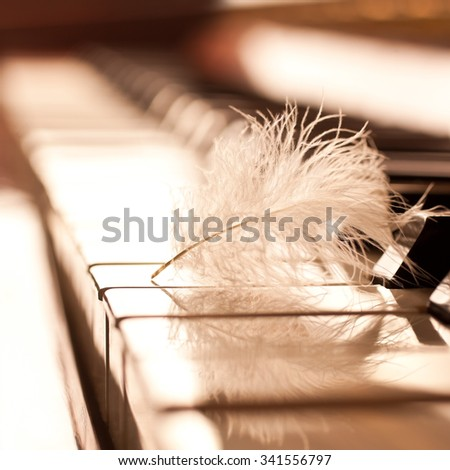 Feather closeup on piano keyboard in golden tones