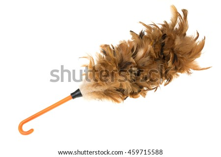 Feather duster isolated on white background.