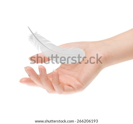 feather in female palm on white background