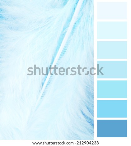feather plumage blue color chart selection for interior - stock photo