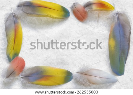 Feathers frame on textured hand made paper. Nature background.  - stock photo