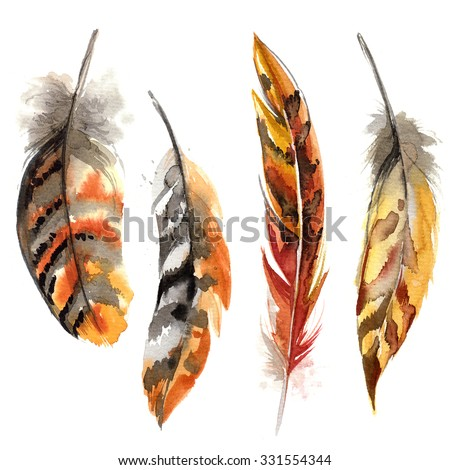 Feathers painted with watercolors on white background. Watercolor color beautiful feathers. - stock photo