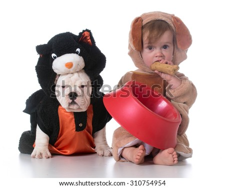 feeding confusion - child dressed like a dog and dog dressed like a cat - stock photo