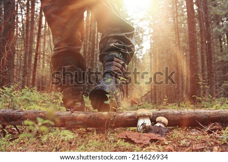 feet in shoes autumn forest hike - stock photo