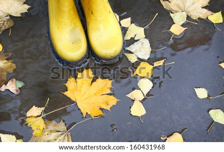 Feet in yellow rubber boots standing in a puddle, where yellow leaves float - stock photo