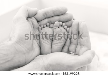 feet newborn baby in father's hands ( black and white ) - stock photo