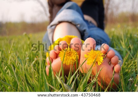 Feet of young woman on the grass adorned with dandelions - stock photo