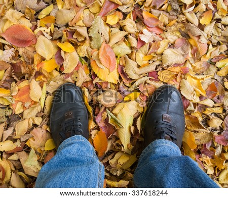 Feet on the yellow leaves.