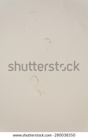 feet trail on sand beach - stock photo