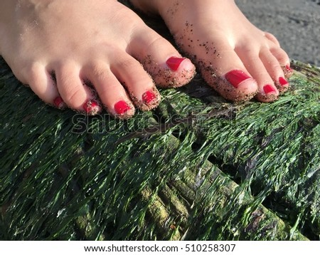 Feet with red toe nails on a log with green moss.