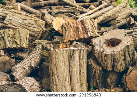 Felled logs, branches and stumps are piled in a heap. - stock photo