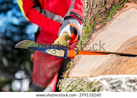 Felling the tree Worker felling the tree with chainsaw and wedges - stock photo