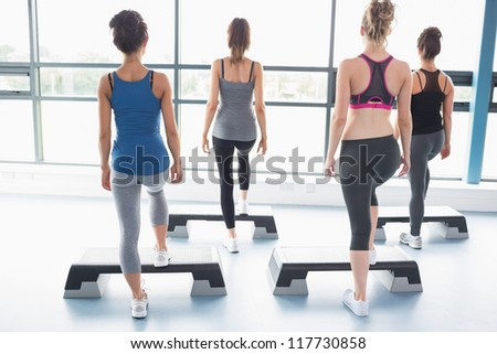 Female aerobic group stepping in gym - stock photo