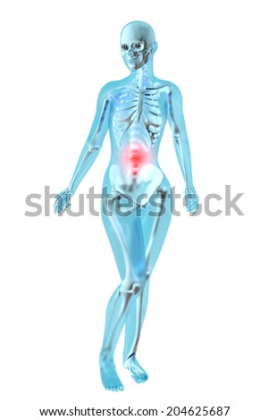 Female anatomy. Stomach ache and pain sensation. 3D illustration.
