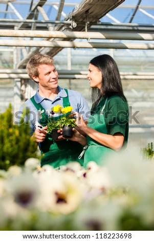 Female and male gardener in market garden or nursery - stock photo