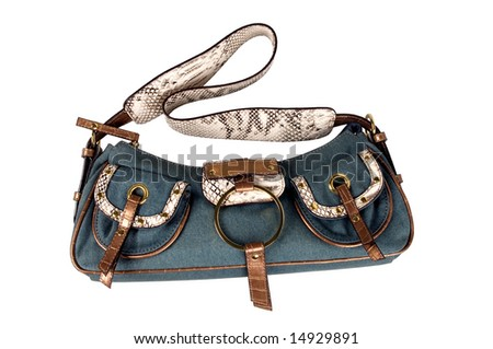 Female bag isolated on a background - stock photo