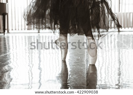 Female ballerina standing on toes in pointes - stock photo
