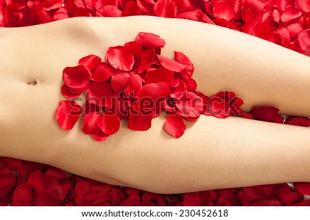 female body with white red rose petals - stock photo