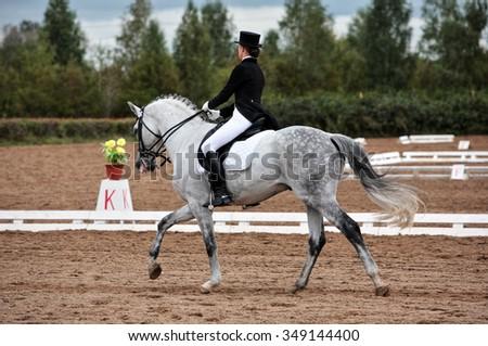 Female dressage rider exercising - stock photo