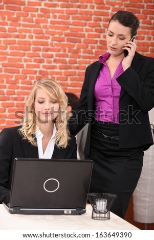 Female execs using a laptop in a restaurant - stock photo