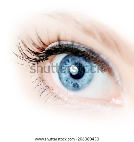 Female eye with long eyelashes close up - stock photo