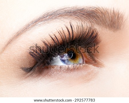 Female eye with long eyelashes closeup shot