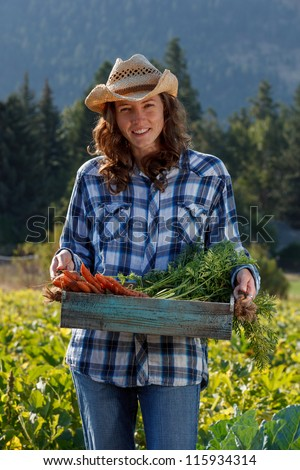 Female farmer holding basket of organic carrots - stock photo