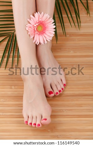 Female feet with a flower - stock photo