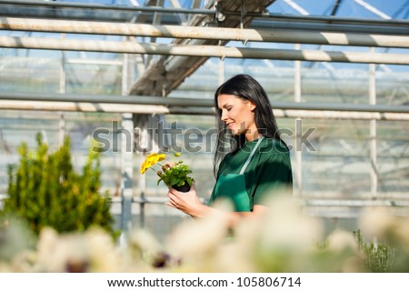 Female florist or gardener in flower shop or nursery - stock photo