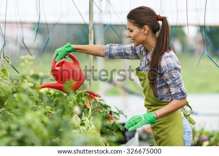 Female florist watering plants in her greenhouse. - stock photo