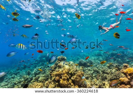 Female freediver floating at coral reef