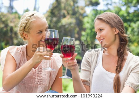 Female friends clinking their wine glasses - stock photo