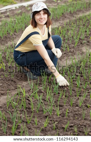 Female gardener at  onion plant in spring
