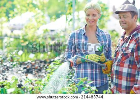 Female gardener looking at mature man watering plants - stock photo