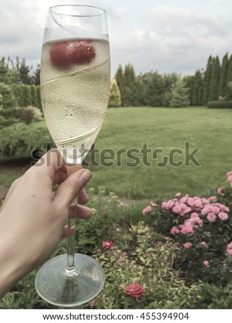 female hand holding champagne glass at garden