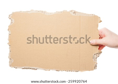 Female hand holding empty piece of cardboard isolated on white  - stock photo