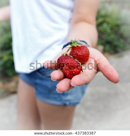Female hand holding fresh strawberries, closeup with selective focus