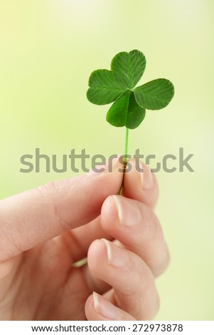 Female hand holding green clover leaf on nature background - stock photo