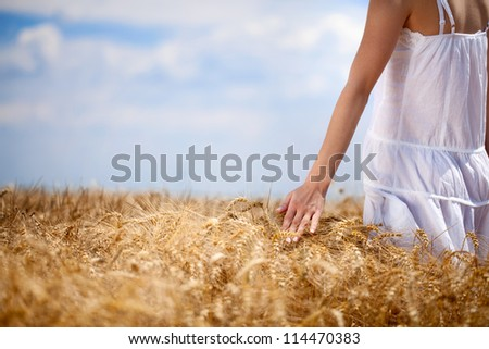 Female  hand touching golden maturely wheat