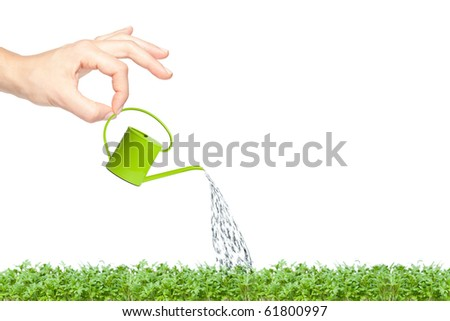 Female hand watering green grass with a small bright green watering can - stock photo