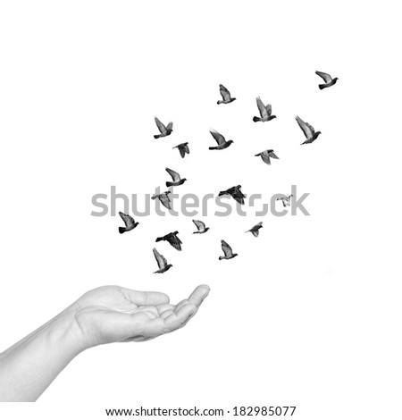 Female hand with open palm to set pigeons flying free. Black and white isolated
