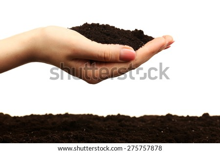 Female handful of soil isolated on white - stock photo