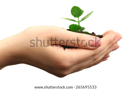 Female handful of soil with small green plant isolated on white