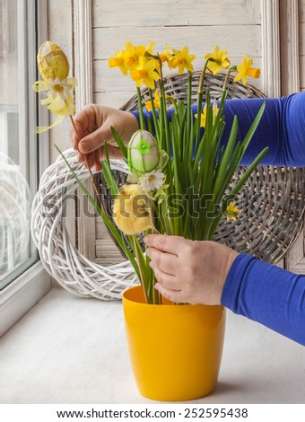 female hands decorated by Easter pot of narcissuses Easter decoration on the window - stock photo
