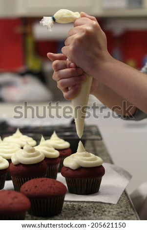 Female hands holding piping bag filled with cream cheese frosting decorating cupcakes - stock photo