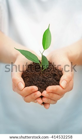 Female hands holding soil and plant, closeup - stock photo