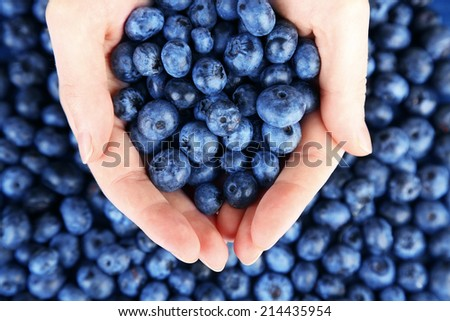 Female hands holding tasty ripe blueberries, close up - stock photo