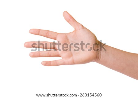 Female hands over white background - stock photo