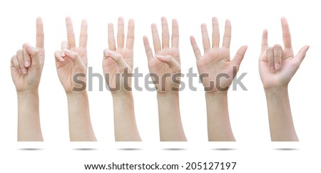 Female hands set  isolated on white with clipping path.