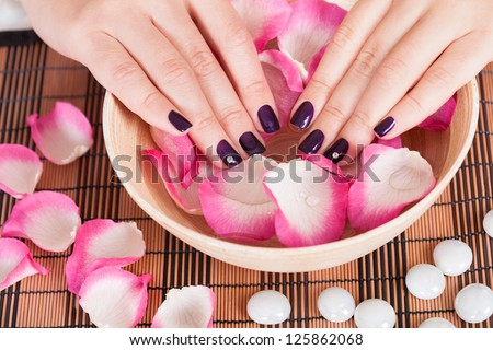 Female hands with manicured fashion nails with purple varnish in a bowl of rose petals and water in a spa beauty treatment concept - stock photo
